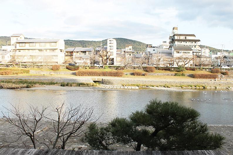 kyotoAoi_mini